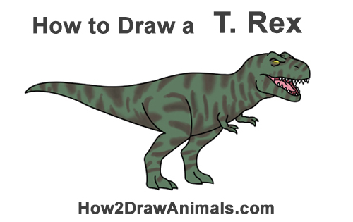 500x315 How To Draw A Tyrannosaurus Rex (Cartoon)