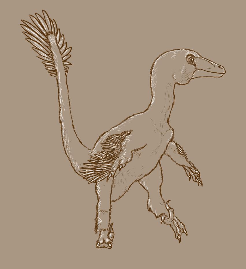 852x930 30 Day Dinosaur Drawing Challenge
