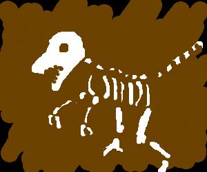 300x250 Dinosaur Fossils