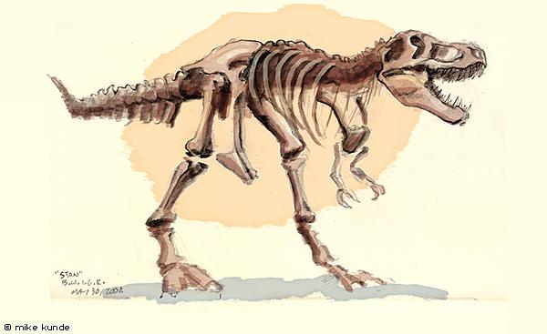 600x367 Dinosaur Fossil Sketch 6 By Allosaurilium
