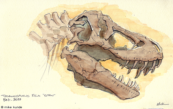 600x378 Dinosaur Fossil Sketch By Allosaurilium