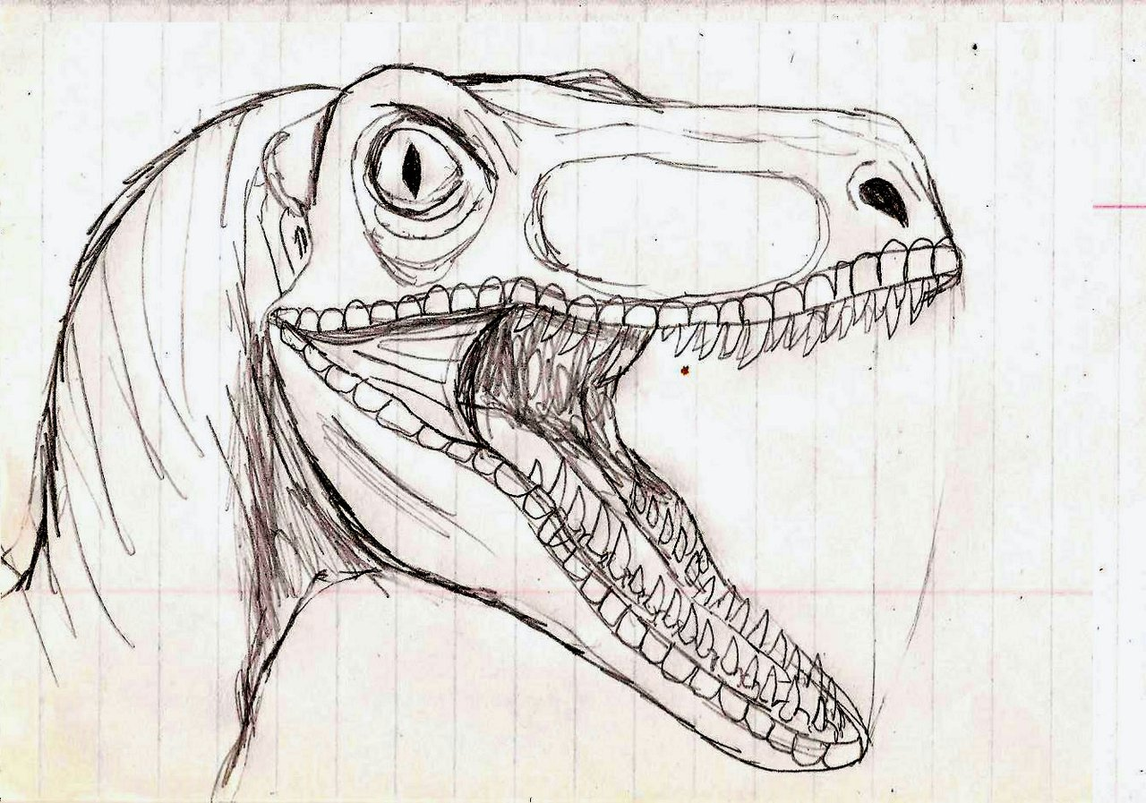 How To Draw A Realistic Dinosaur