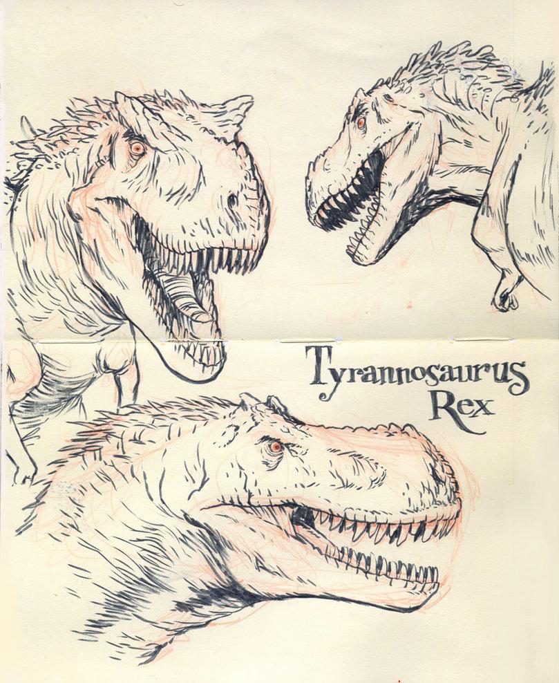 809x988 Tyrannosaurus Rex 01 By Jakeparker