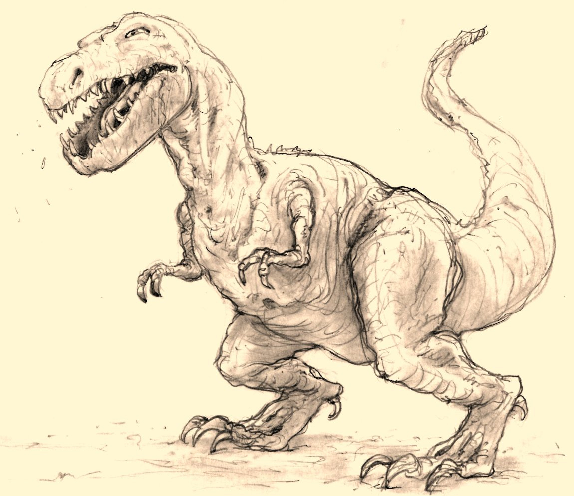 1150x995 Pencil Sketches Of Dinosaurs Webster Colcord Dinosaur In Pencil
