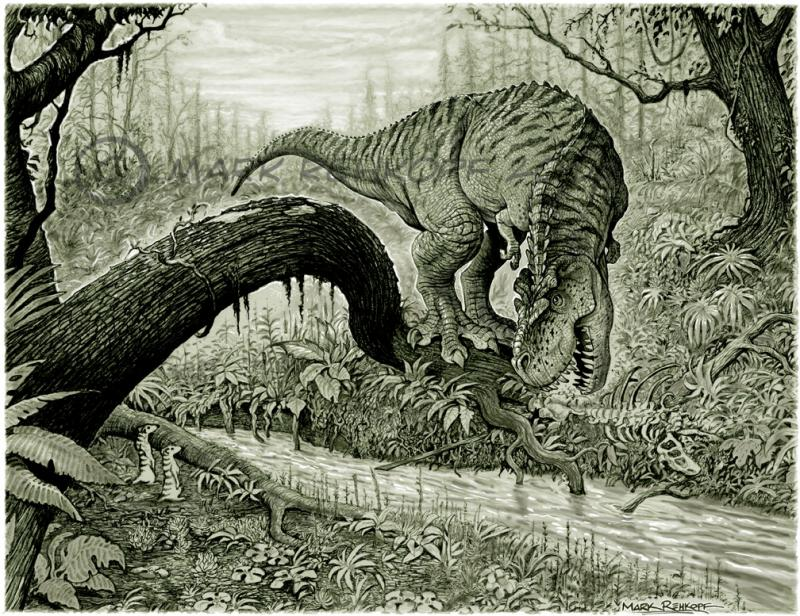 800x616 Scavenging T Rex Pencil Drawing With Digital Color 2007 Mark
