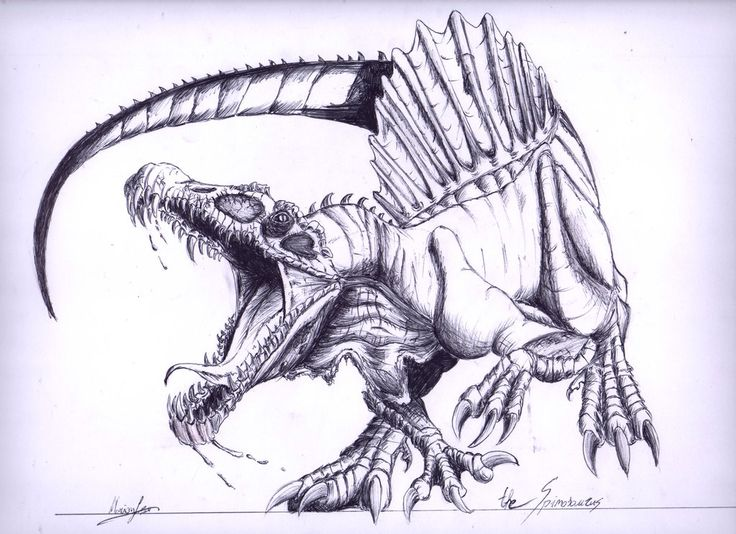 736x534 Spinosaurus (Last Pen Drawing Of Dinosaurs The Amazing