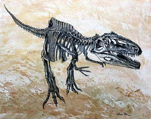 300x238 Dinosaur Skeleton Posters Fine Art America