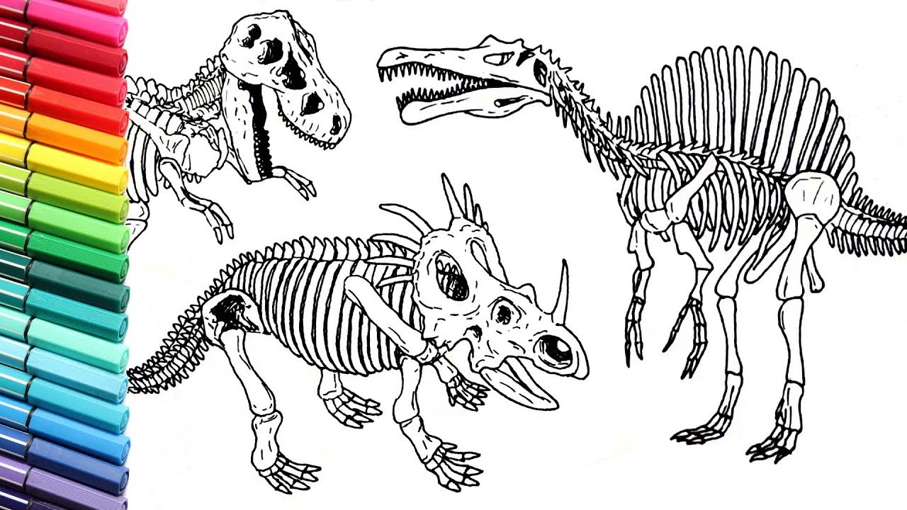 1280x720 Drawing And Coloring Dinosaurs Skeleton