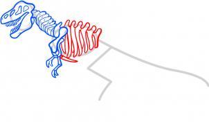302x176 How To Draw How To Draw A Dinosaur Skeleton, Dinosaur Skeleton