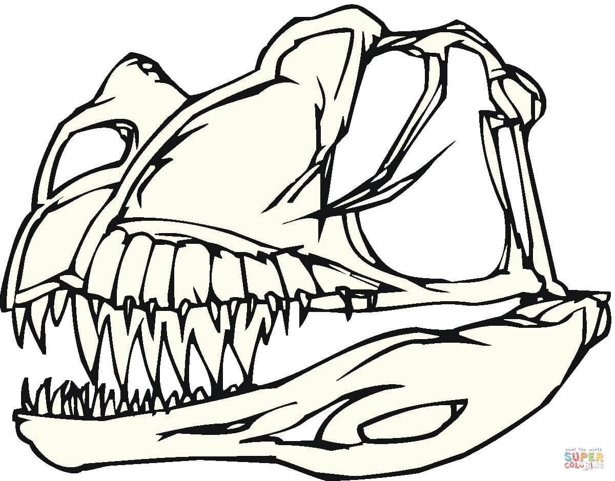 1200x939 Quick Dinosaur Skeleton Coloring Page Bones Free Printable Pages