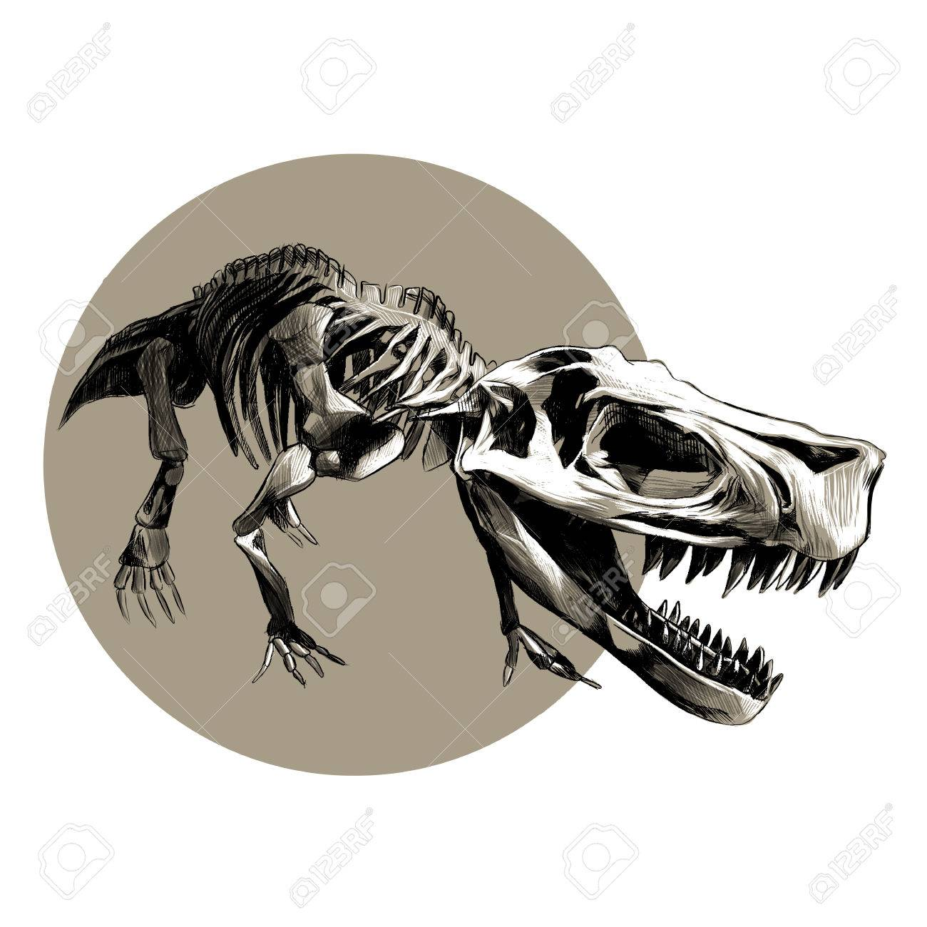 1300x1300 Skeleton Dinosaur T Rex Vector Black And White Drawing Pattern