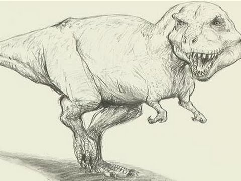 480x360 How To Draw A T Rex