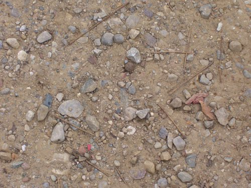 500x375 Drawing Pictures In The Dirt