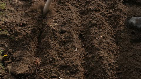 480x270 Person Drawing Lines In The Dirt With A Stick Stock Footage