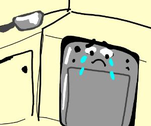 300x250 Crying Dishwasher