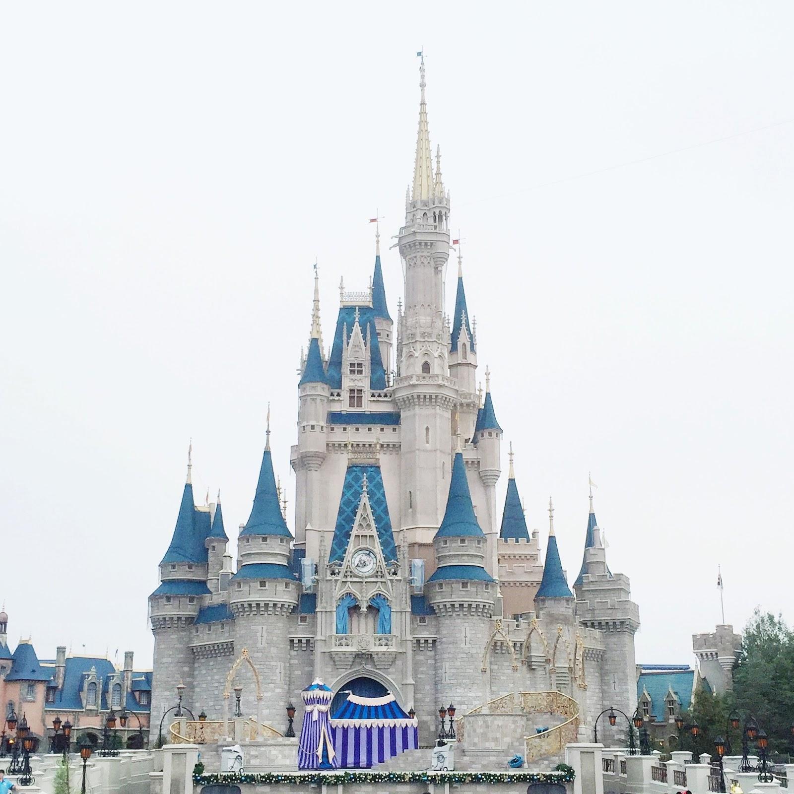 1600x1600 Disney World Castle Drawing