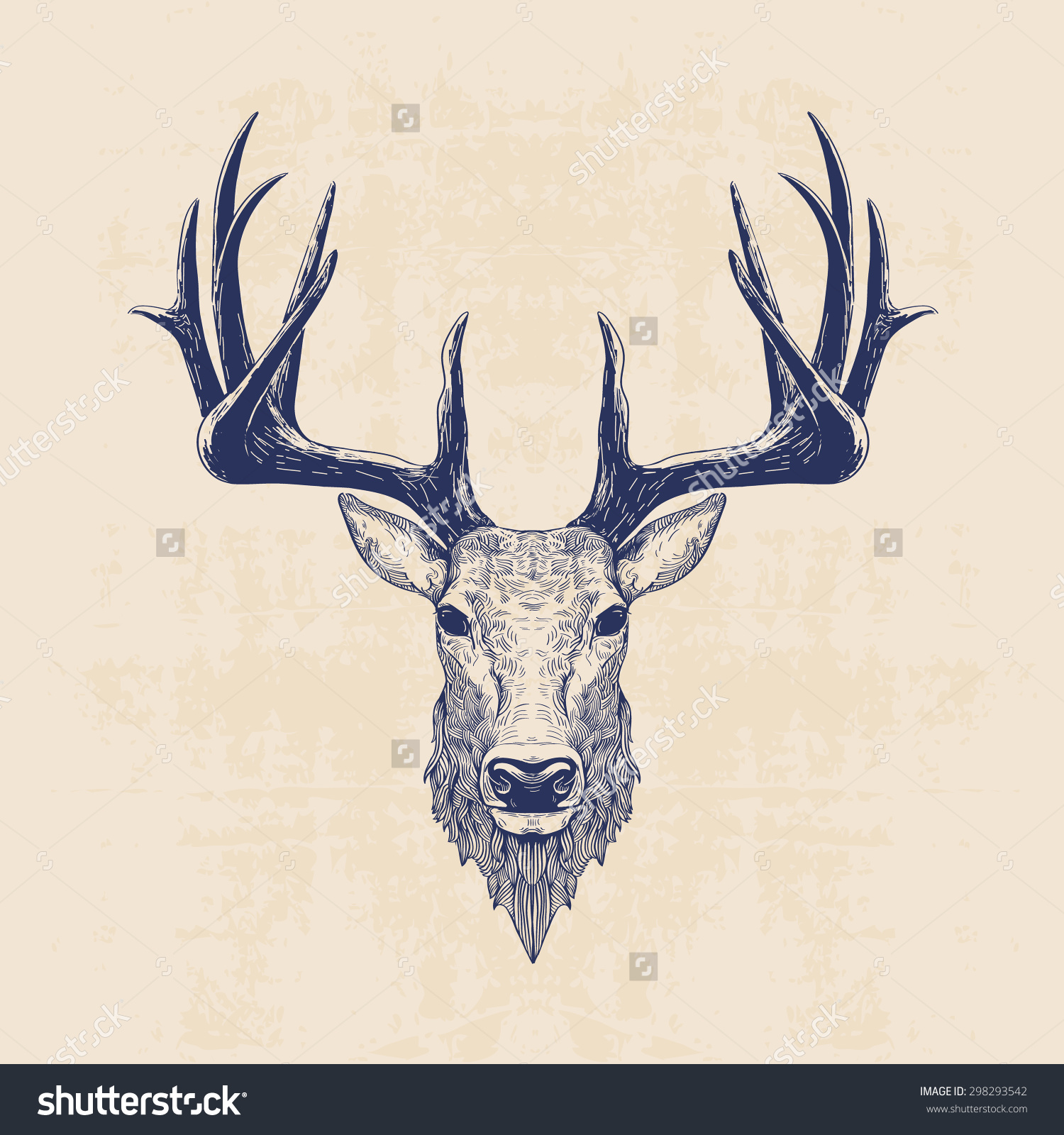 Doe Head Drawing at GetDrawings.com | Free for personal use Doe Head ...