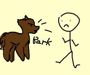 300x250 Dog Barking
