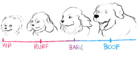 482x199 Dog Chart Dogs Know Your Meme