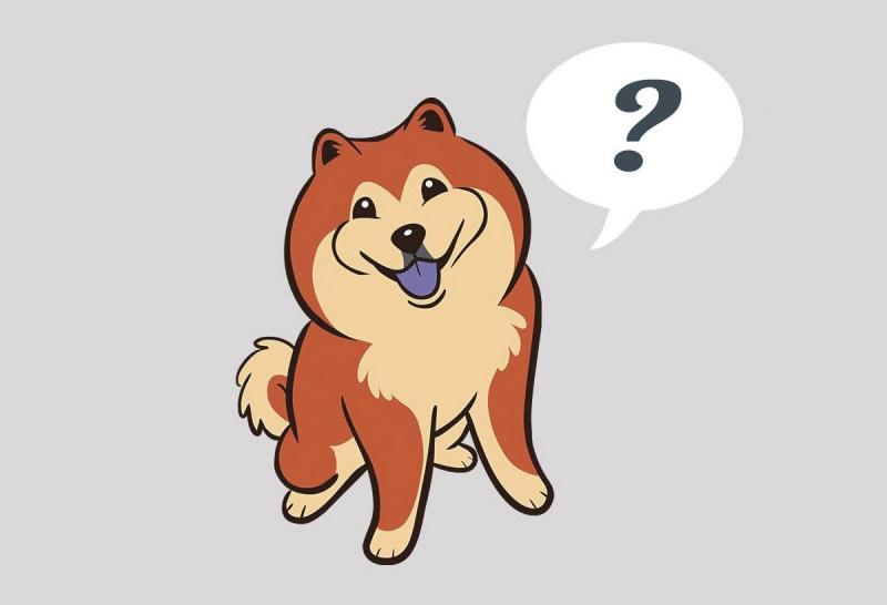800x546 Ispeak Dog Website Explains Dog Language To Users The Bark