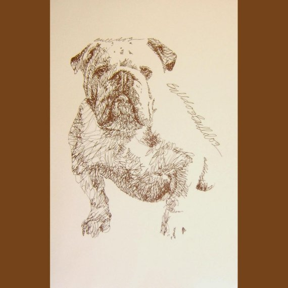 570x570 English Bulldog Dog Art Portrait Drawing From Words. Your Dog'S