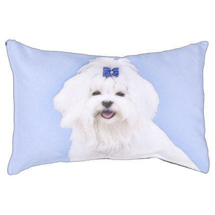 422x422 Maltese Pet Bed