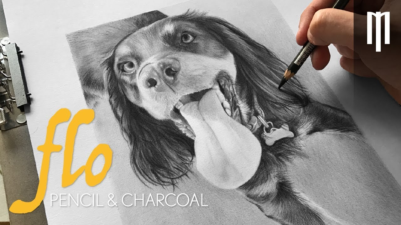 1280x720 Realistic Charcoal Drawing Of A Dog