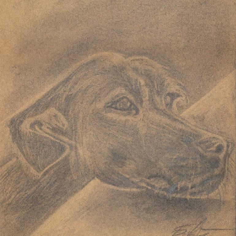 770x770 Saatchi Art Dog Charcoal Drawing 2929cm Original, Charcoal