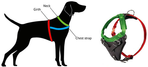500x227 Golden Retriever Leather Dog Harness With American Flag Drawing