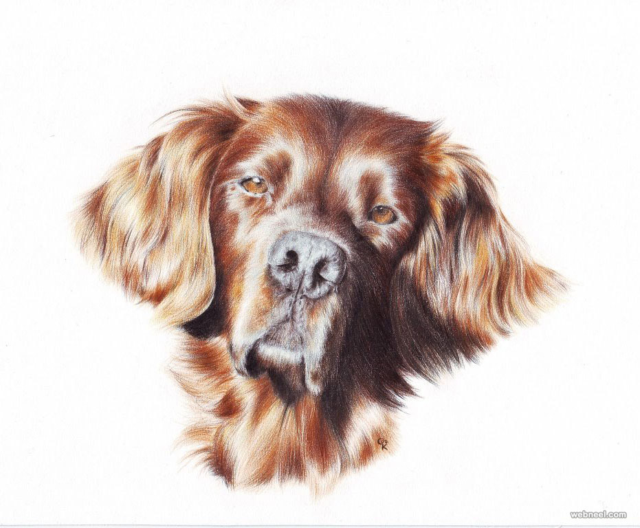 931x768 30 Beautiful Dog Drawings And Art Works From Top Artists