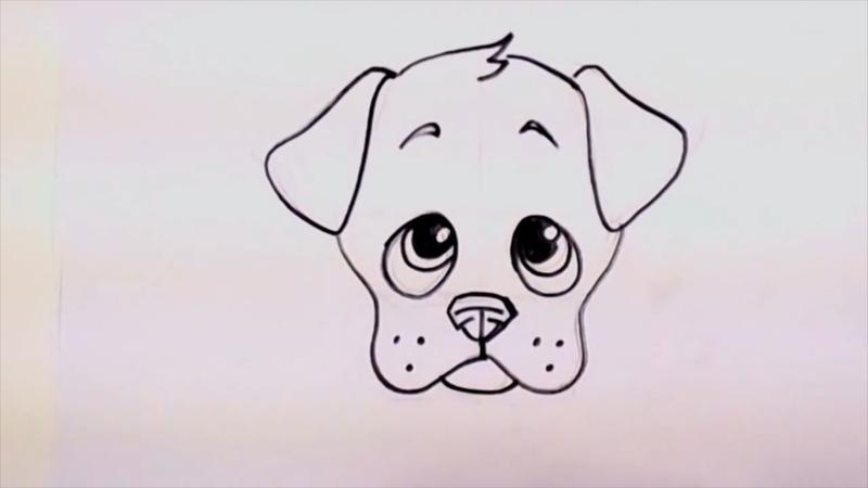 800x450 Drawing A Cute Cartoon Puppy Face