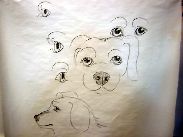 dog eyes drawing at getdrawings com free for personal use dog eyes