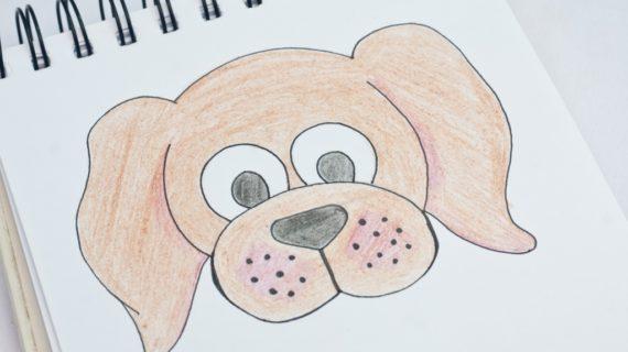570x320 How To Draw A Dog Face How To Draw A Dog Face Step Step Very