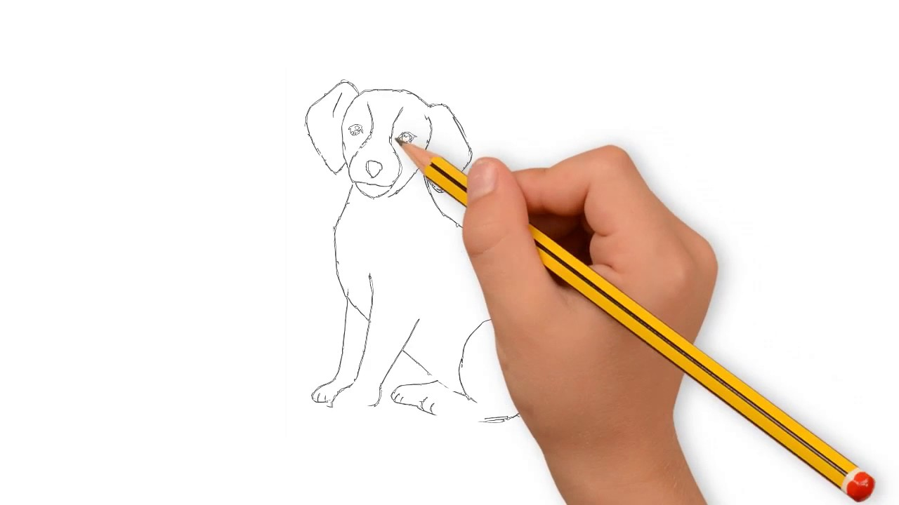 1280x720 Dog Drawing With Pencil Dog Drawing Easy How To Draw Dog