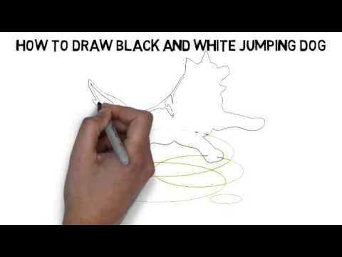 480x360 How To Draw Black And White Jumping Dog Quickly And Easily