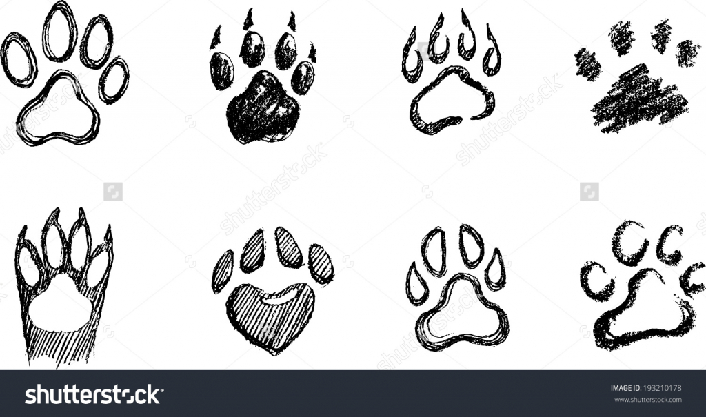 1024x605 drawing of a dog paw