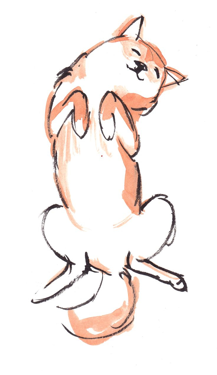 736x1268 Cute Drawing Styles Best Dog Drawings Ideas On How
