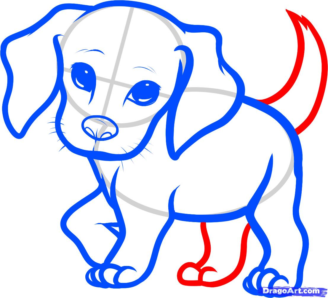 1107x1005 How To Draw A Beagle Puppy, Beagle Puppy Step 6 Drawing