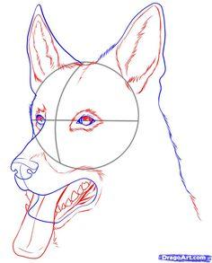 236x293 How To Draw A German Shepherd For Kids Step 7 1 000000112855 5.gif