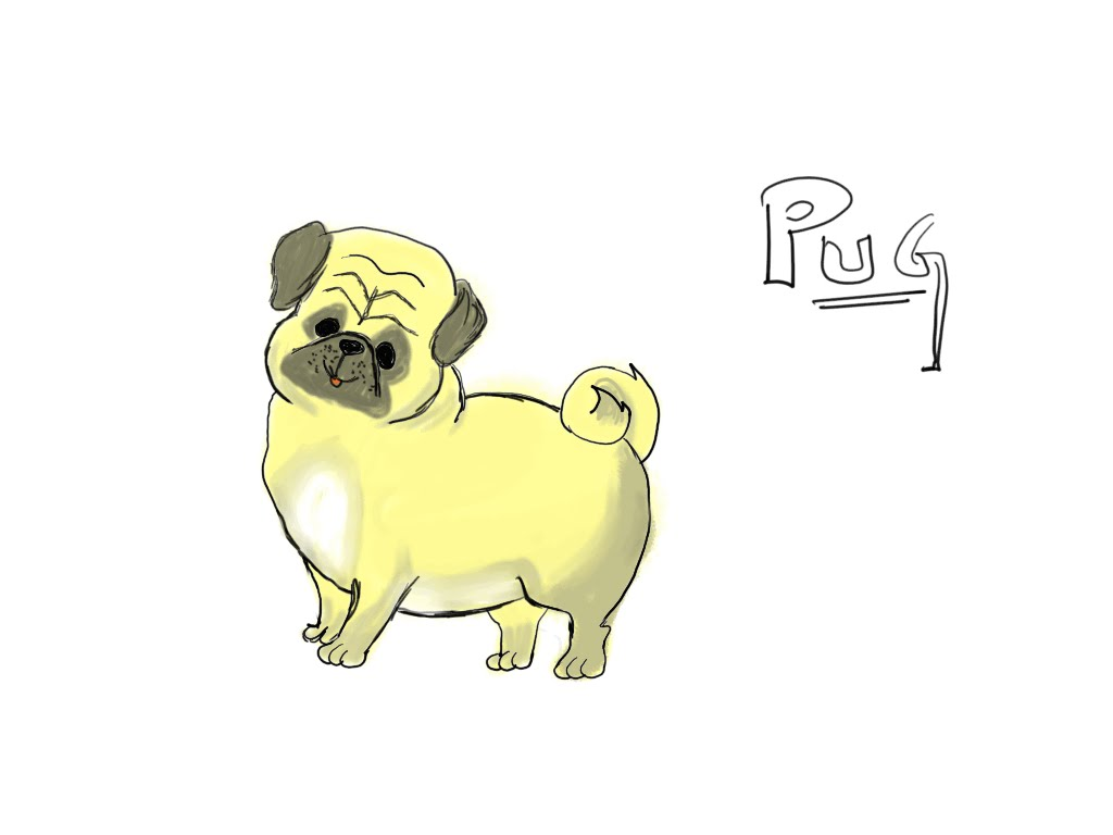 1024x768 How To Draw A Pug Dog Learn Drawing For Kids