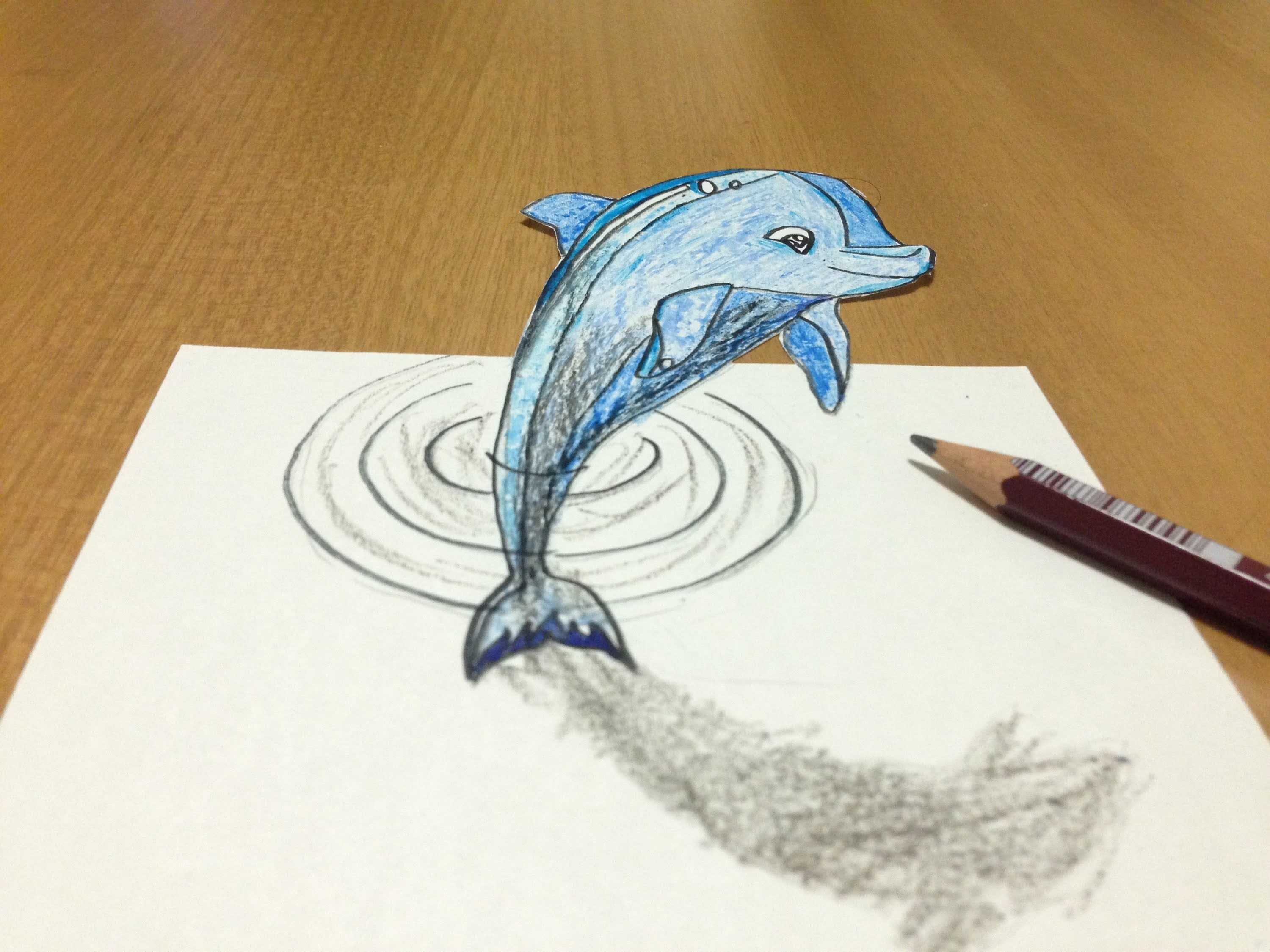 3000x2250 3d Dolphin Drawing