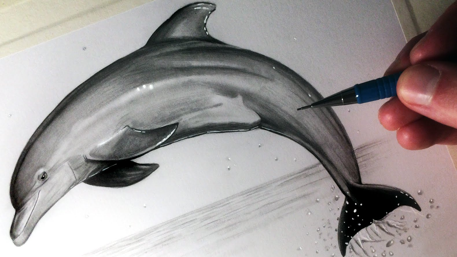 1580x889 How To Draw A Dolphin