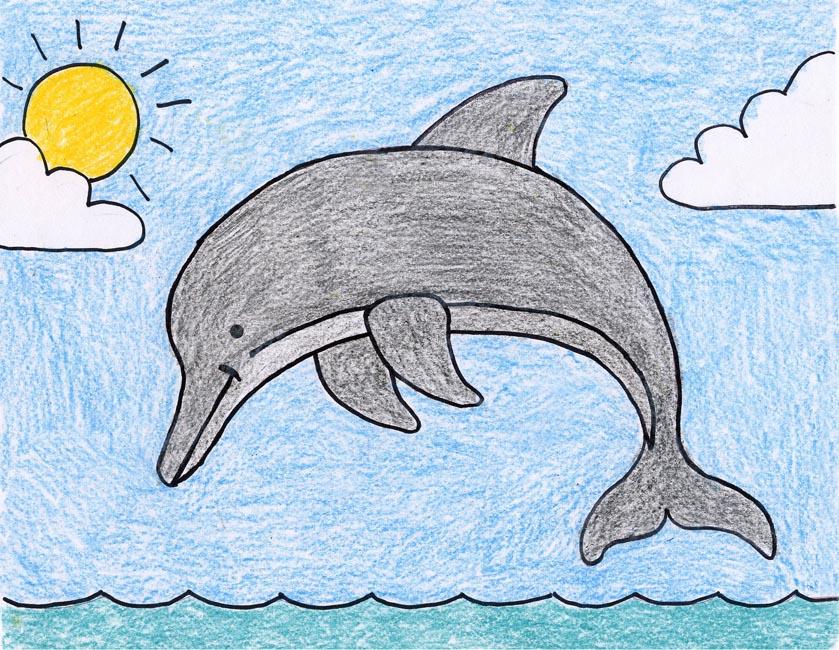 839x650 Dolphin