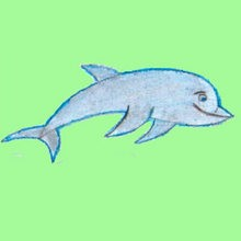 Dolphin Drawing For Kids At Getdrawings Com Free For Personal Use