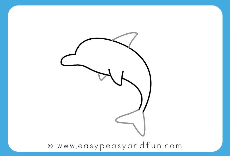 801x543 Dolphin Drawing Dolphin Drawing Backgrounds