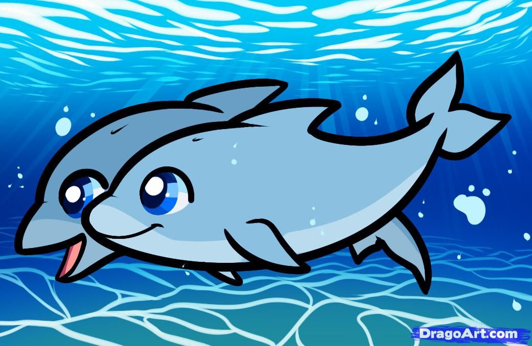 1041x678 Dolphins Pictures How To Draw Dolphins , Draw For Kids