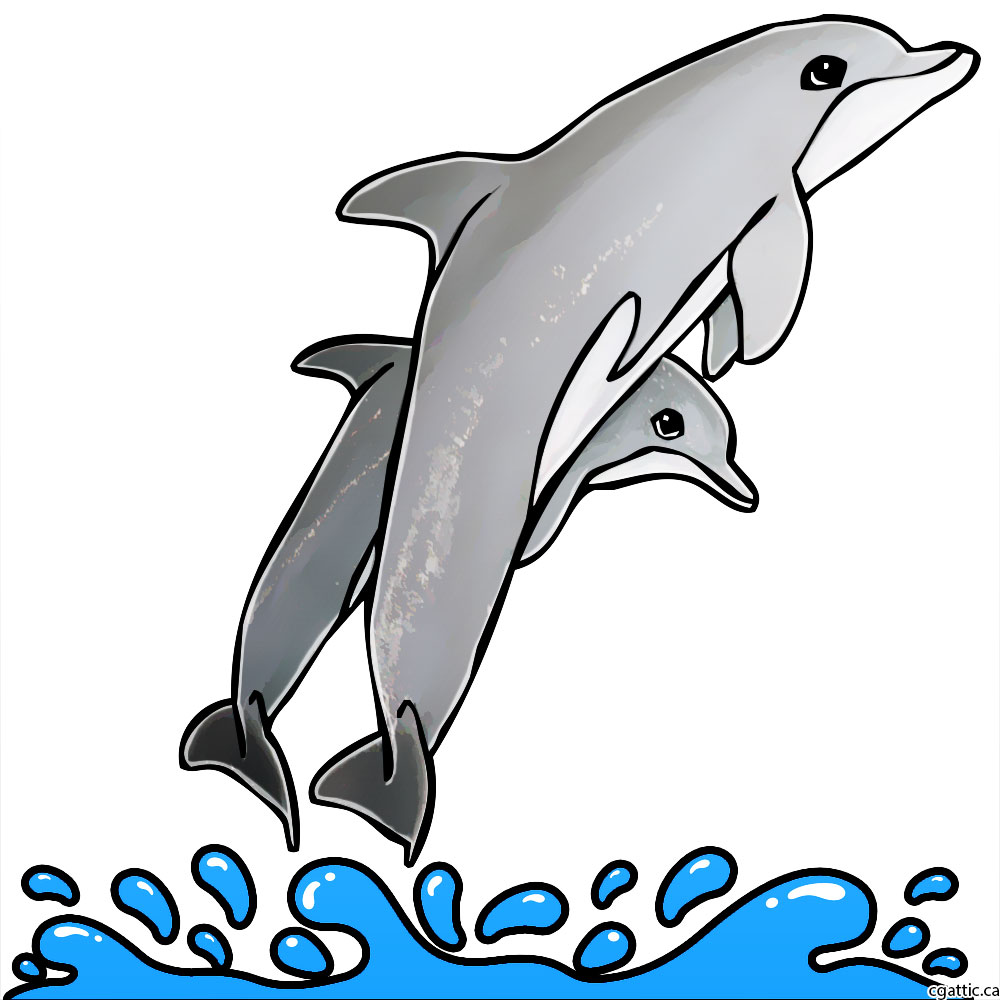 1000x1000 Cartoon Dolphin Drawing In 4 Steps With Photoshop