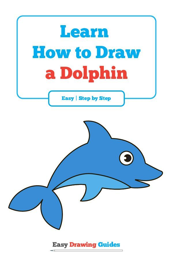 Dolphin Drawing Step By Step At Getdrawings Com Free For Personal