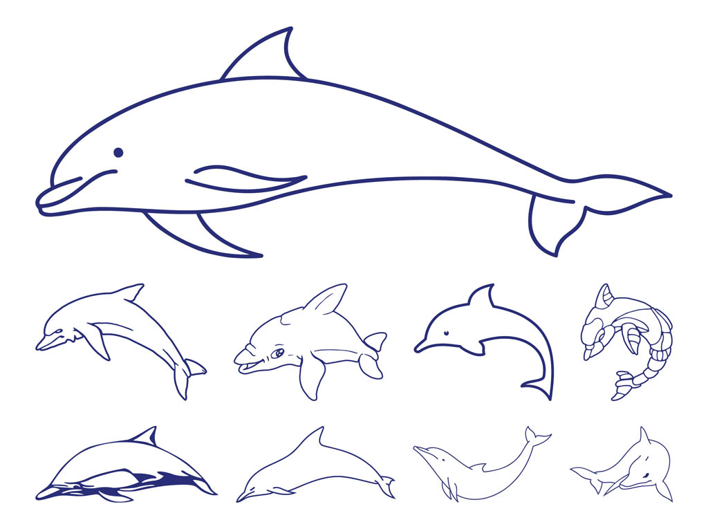 1024x765 Dolphins Outlines Vector Art Amp Graphics