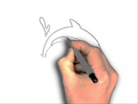 480x360 How To Draw A Dolphin Jumping Out Of Water Step By Step